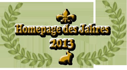 Homepage des Jahres 2013